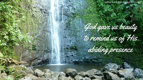 God gave us beautyto remind us of His abiding presence