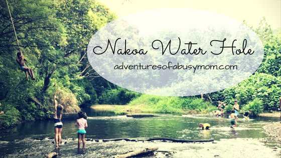 Nakfa Water Hole-2