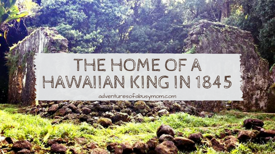 The Home of a Hawaiian King in 1845
