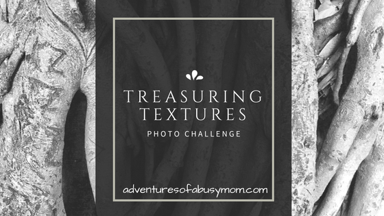 TreasuringTextures