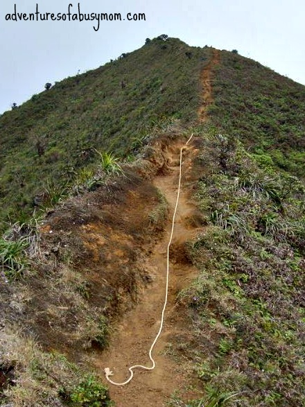 middle ridge 4