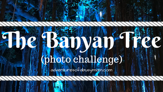 The Banyan Tree.png