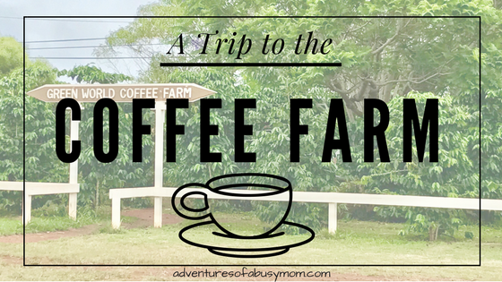 A trip to the coffee farm