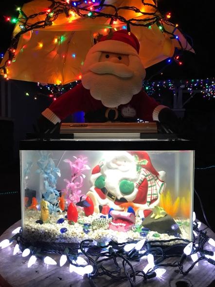 Simply Having A Wonderful Christmas Time.Simply Having A Wonderful Christmas Time Christmas Lights