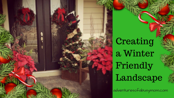 Landscaping Ideas Which Create a Winter Wonderland