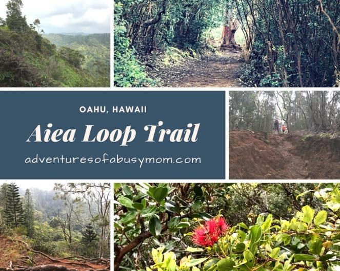 Aiea Loop Trail.jpg