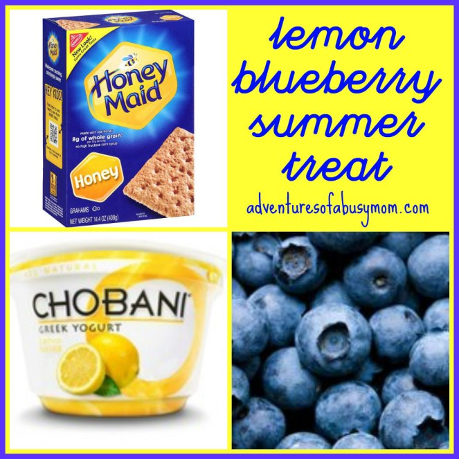 Lemon Blueberry Summer Treat